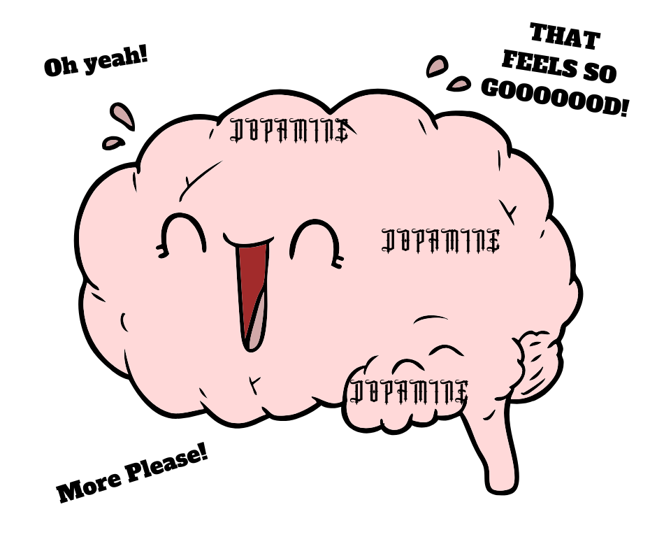 Brain + Dopamine