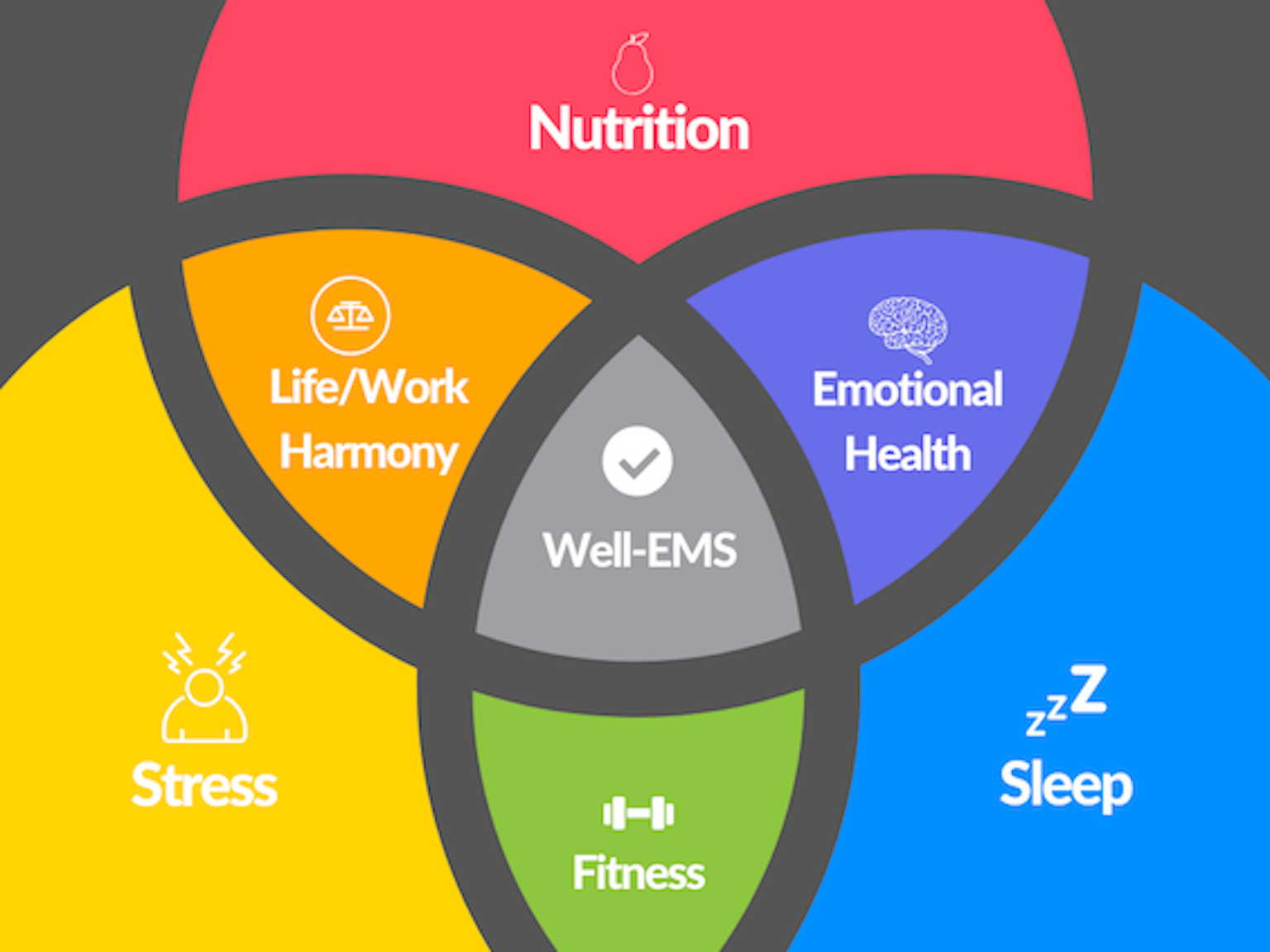 Diagram of being well in EMS